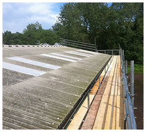 Scaffold Edge Protection Norfolk & Suffolk